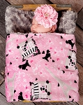 Paris Double Minky Baby Blanket
